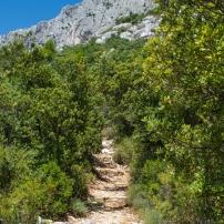Sentier de randonnée Ermitage Saint Ser Montagne Sainte-Victoire
